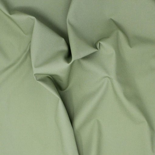 Pain solid fabric in sage green.